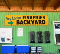 Key Largo Fisheries Backyard